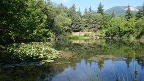 湖在克里米亚半岛森林里 免版税库存图片