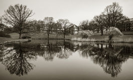 湖在公园,奥胡斯大学,丹麦 库存照片