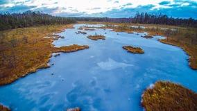 湖在冬天 免版税库存照片