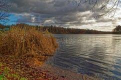 湖在剧烈的多云天空下和肌力在前景用茅草盖在一个冬天 免版税库存图片