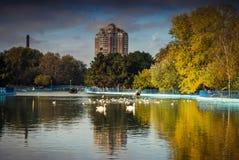 湖在城市的心脏 库存照片