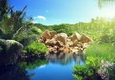 湖在塞舌尔群岛的密林 库存图片
