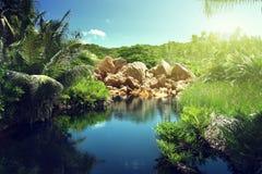 湖在塞舌尔群岛的密林 图库摄影
