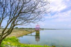 湖在夏天 免版税库存照片