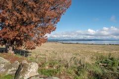 湖在多云天空下 库存照片