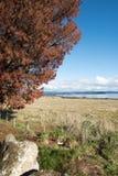 湖在多云天空下 库存图片