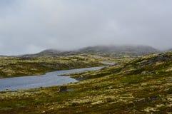 湖在寒带草原 库存照片