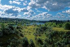 湖在森林里 库存图片
