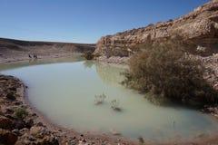 湖在沙漠 免版税库存图片
