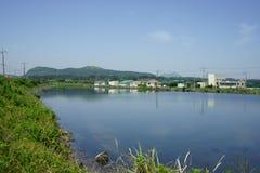 湖在济州 库存照片