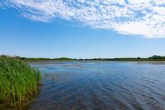湖在理查发出当当声状态消遣地区 免版税库存图片