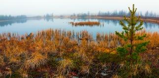 湖在秋天 免版税库存照片