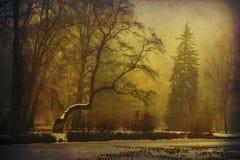 冻湖在第一雪以后的公园 免版税库存照片