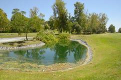 湖在绿色高尔夫球场 库存照片