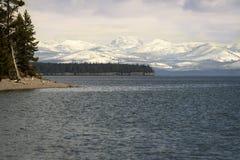 湖在雪和山盖的黄石海岸线在黄石国家公园的日落期间 免版税库存图片