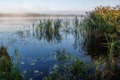 湖在黎明和雾的 免版税库存照片