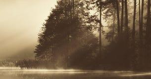 湖在黎明 免版税库存图片