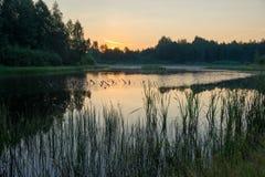 湖在黎明 库存照片
