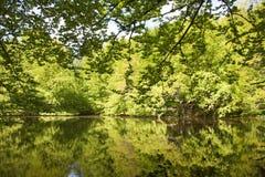 湖在Dyrehaven 免版税库存图片