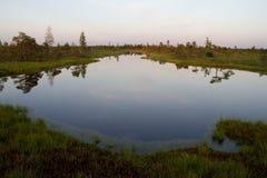 湖在Kemeri沼泽在拉脱维亚 图库摄影