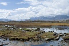 湖在Leh,印度 库存图片