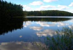 湖夏天木头 库存照片