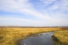 湖大草原河 库存图片