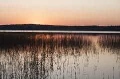 湖天际秋天风景在生长在水中的日落和芦苇的 免版税库存照片