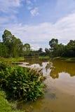 湖室外公园在雪兰莪马来西亚 免版税库存图片
