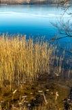 湖密尔沃基早晨美国冬天威斯康辛 免版税库存照片