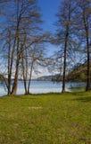 湖对玛丽亚Woerth的Woerth视图通过树在春天 图库摄影