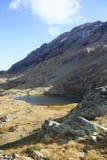 湖小的比利牛斯urdiceto 图库摄影
