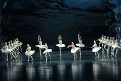 湖小组舞蹈芭蕾天鹅湖 免版税库存图片