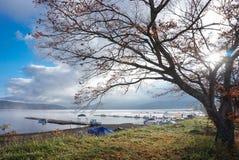 湖山中在清早,日本的风景 库存图片