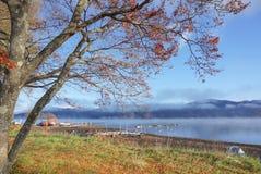 湖山中在清早,日本的风景 库存照片