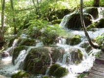 湖岸五颜六色和充满活力的风景  平静的风景有用作为背景 降低湖峡谷 全国Plitvice的湖 免版税库存照片