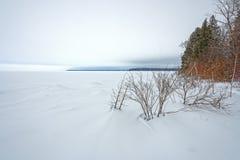 湖岸冻结的全景在冬天 免版税库存照片