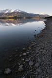 湖岸反映wanaka 库存图片