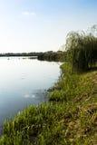 湖岸和天空 库存照片