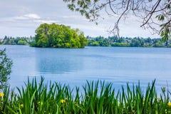 湖岸看法 库存图片