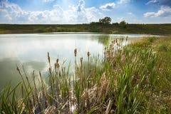 湖岸自然背景 库存照片