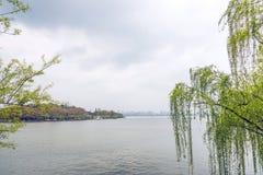 湖岸风景 免版税图库摄影