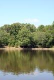湖岸 库存照片