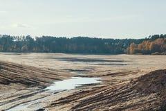 湖干燥河床在森林里 免版税库存图片