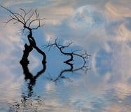 湖平安的scape 免版税库存图片