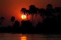 湖掌上型计算机日落结构树 免版税图库摄影