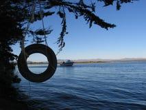 湖摇摆轮胎 库存图片