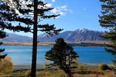 湖新的tekapo西兰 库存照片