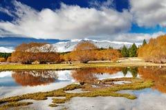 湖新的tekapo西兰 免版税库存照片