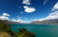湖新的wanaka西兰 库存图片